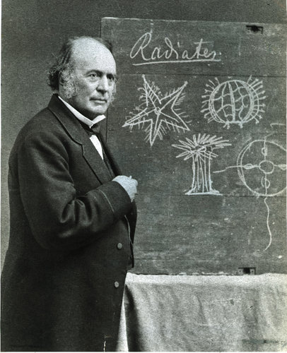 Louis Agassiz in front of a chalkboard, circa 1872 (courtesy of Harvard University).