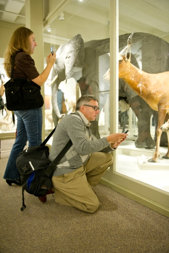 Jamie and Mark Dion documenting some of the taxidermy offerings at the MCZ.