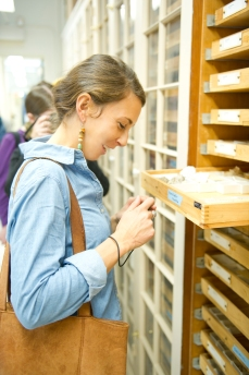 Lily investigaing some of the specimen drawers behind the scenes of the MCZ.