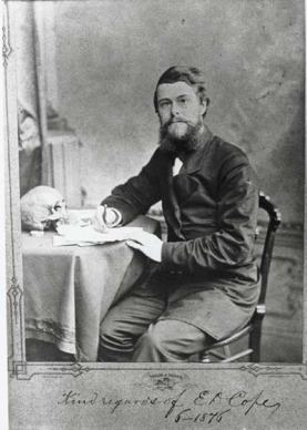 American paleontologist  Edward Drinker Cope in his office at the Academy of Natural Sciences, Philadelphia, in the 1870s or 80s.