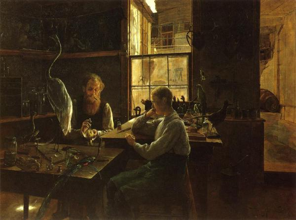 henry alexander, first lesson (the taxidermist)