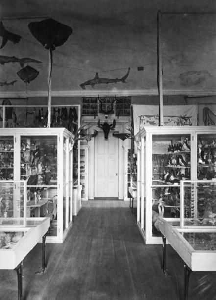 14_01_06_JenksMuseum_Interior_V1_BW