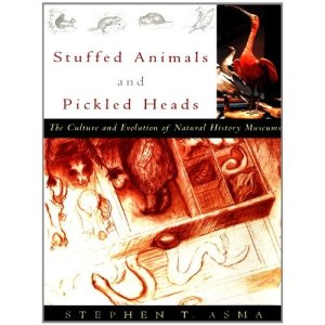 Stuffed Animals and Pickled Heads by Stephen Asma