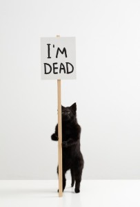 David Shrigley, I'm Dead, 2011