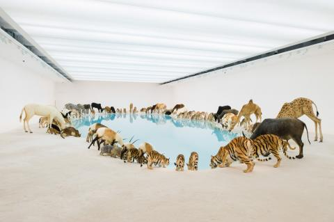 "Heritage (Falling Back to Earth) installation at the Gallery of Modern Art, Brisbane, 2013. According to Cai Guo-Quiang, ""[It] expresses the idea of going home, returning to the harmonious relationship between man and nature, and re-embracing the tranquility in the landscape."""